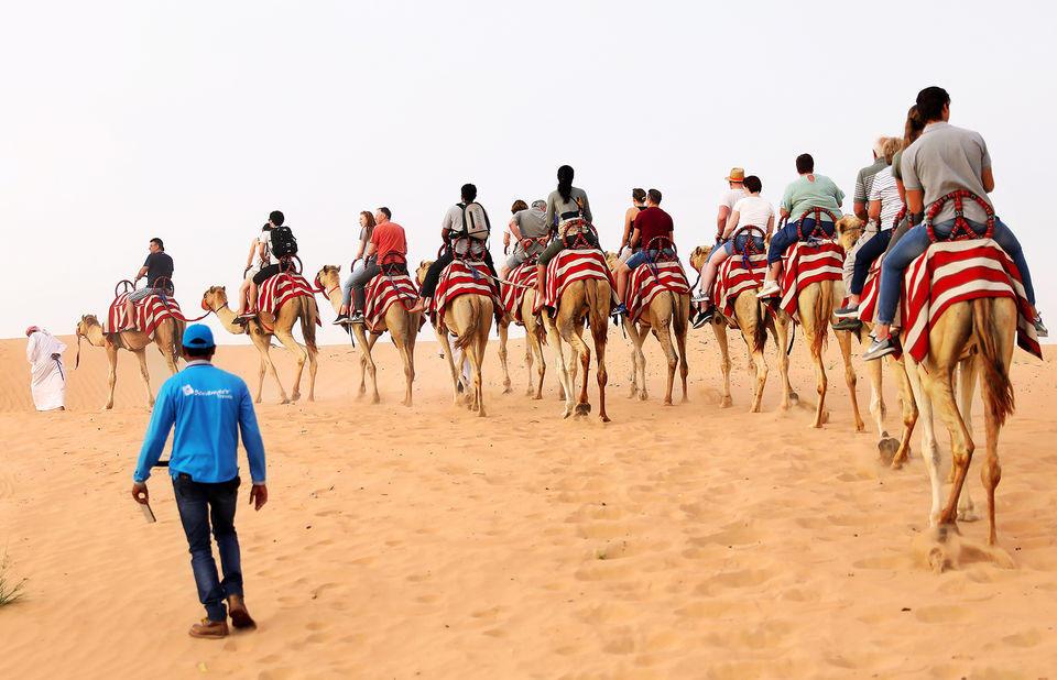 Dubai'de Çöl Safarisi - Develerle Safari