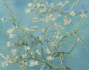 Çiçek Açan Badem Ağacı - Almond Blossom- Van Gogh Müzesi Biletleri