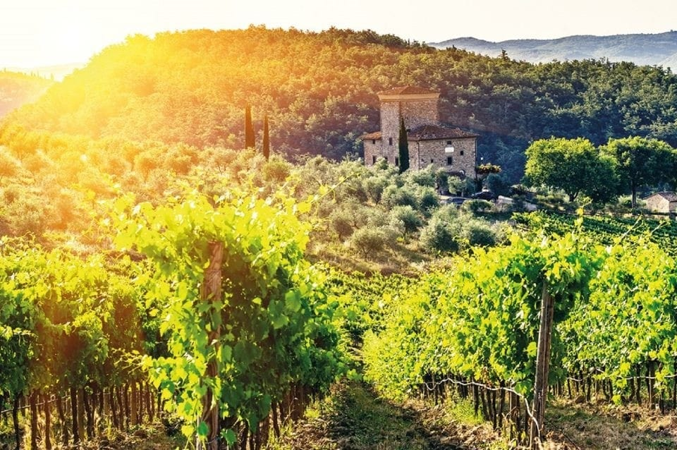 Floransa Kalkışlı Chianti Öğleden Sonra Yarım Günlük Tur