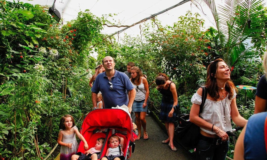 Londra Hayvanat Bahçesi Bileti ve Giriş Ücretleri (