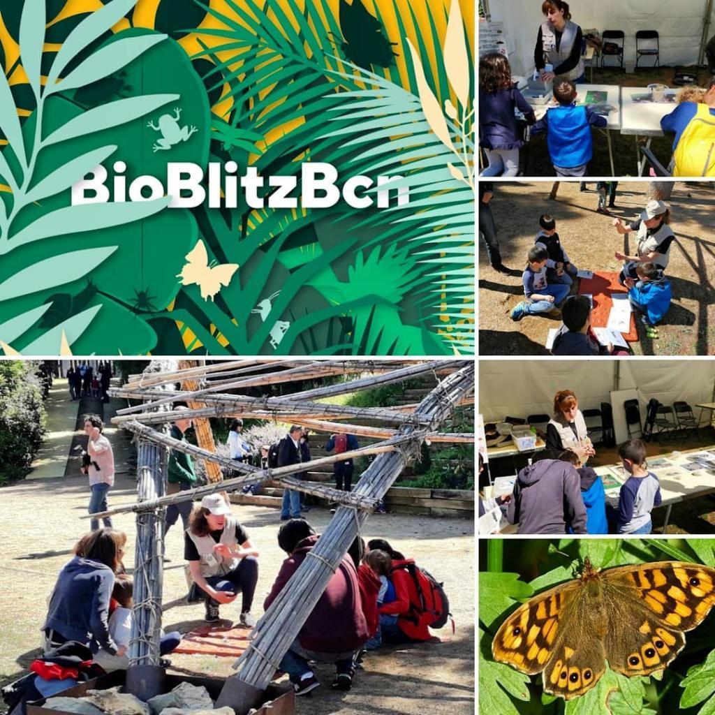 Barselona Hayvanat Bahçesi