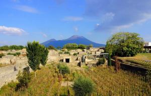 Forum Boarium - Pompeii. Fotoğraf: Pompeii Sites
