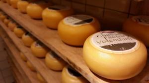 Volendam'ın Peynirleri - I Amsterdam Card Rehberi