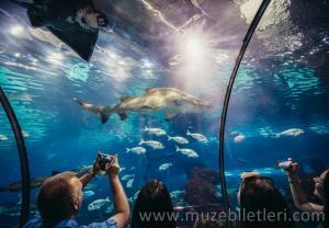 Barselona Akvaryumu - The Oceanarium bölümü