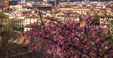 Boboli Bahçeleri - Floransa - İtalya (4)